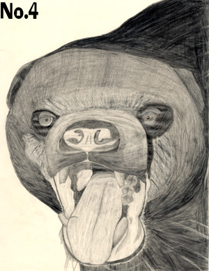 bearpencildrawing